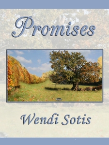 Promises WordPress Blog